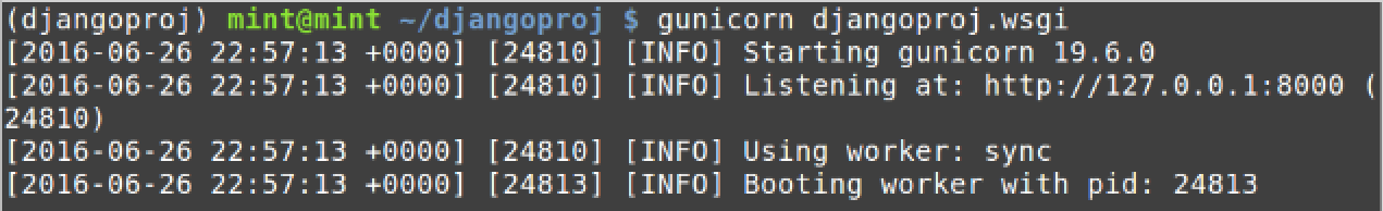 Result of running gunicorn djangoproj.wsgi on the command line.
