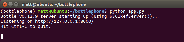 Successfully starting the Bottle development server from the command line.