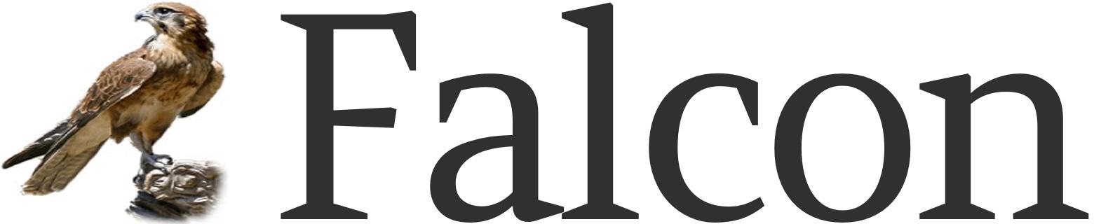 Falcon - Full Stack Python
